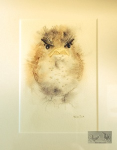 "watercolor of a robin signed ""Wooster"""