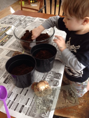 Ask your child to help you spoon potting mix into the pot until each pot is about 2/3 full.  Remember to thank your child for helping, and to praise them for doing such a good job helping.