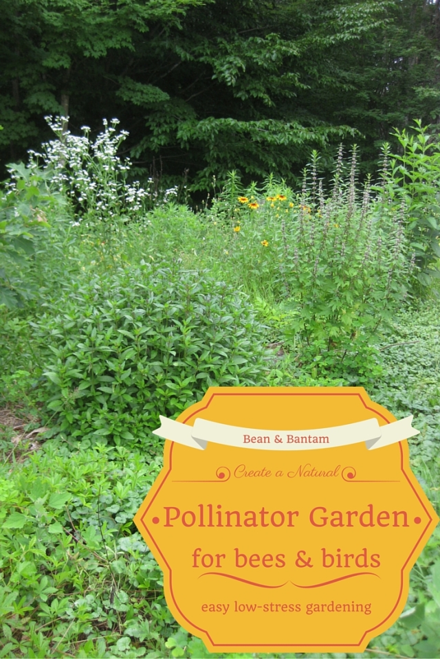 Create a natural pollinator garden for the bees & birds; an easy low-stress gardening method of cultivating and creating a new garden that helps wild pollinators like birds and bees, provides them with habitat and pollen and nest areas. Bean & Bantam blog post about how I created my own pollinator garden.