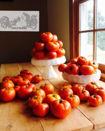 Bean & Bantam: One day's harvest from the garden, from six or eight plants.