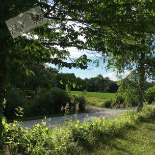 June road Vermont