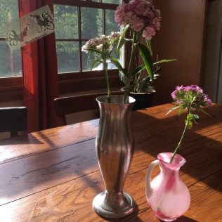 morning sunlight vase of flowers